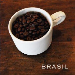 画像1: 【nest coffee】ブラジル  200g
