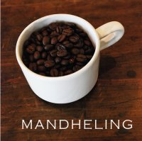 【nest coffee】秘境のマンデリン Mandheling 100g