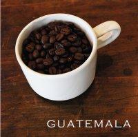 【nest coffee】最高峰のグァテマラ Guatemala 200g